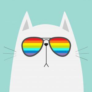 leo cat with sun glasses