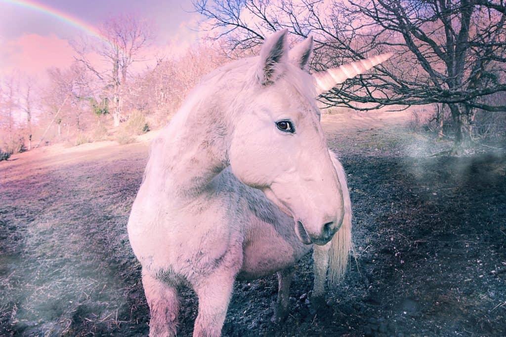 may astrology unicorn